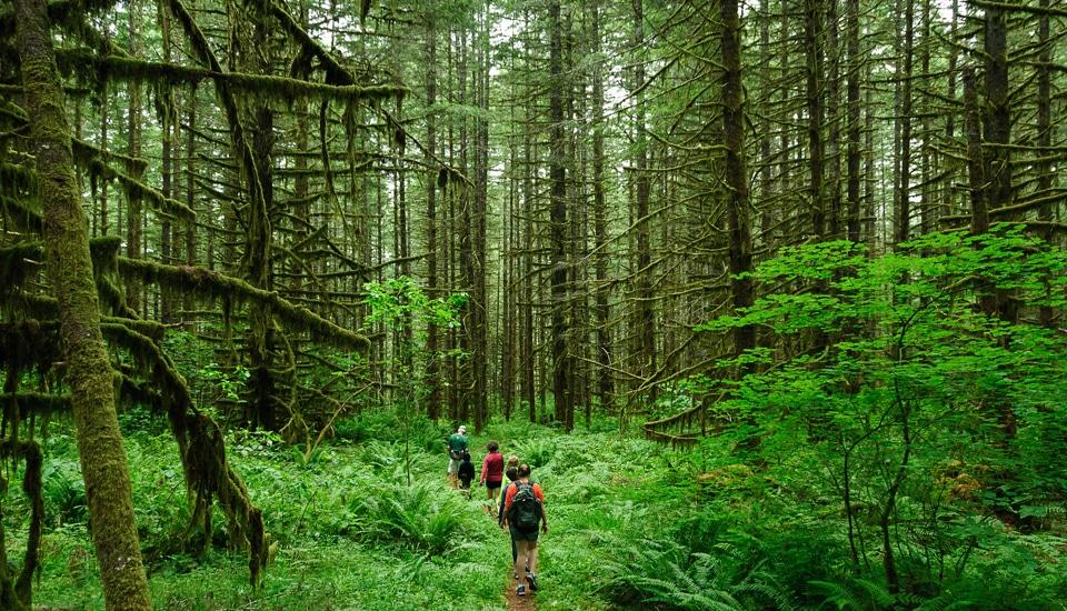 """Hike"" (CC BY-SA 2.0)by Loren Kerns"